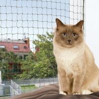 Ochranná síť pro kočky, tkaný drát, olivová 4×3m